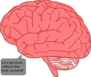 brainasshole